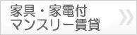 banner02_kagu.jpg